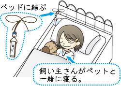 ベッドに結ぶ 飼い主さんがペットと一緒に寝る