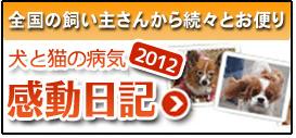 全国の飼い主さんから続々とお便り 犬と猫の病気 2011感動日記
